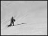 THE DARING TREE (LitterART) Tags: schnee winter snow mountains alps tree abandoned nature austria österreich frost peak berge alpen peaks baum steiermark styria daring lonesome gipfel lonesometree stubalpe wetterfichte