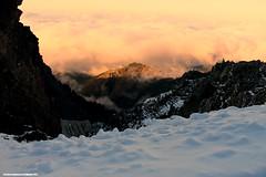 18-02.2012 134 (www.palmerosenelmundo.com) Tags: 18022012