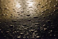 Reflection (LithgowLights) Tags: mist macro ex rain flash small sigma f28 dg sigma70mmf28exdgmacro