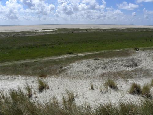 Green beach / Groen strand Noordvaarder