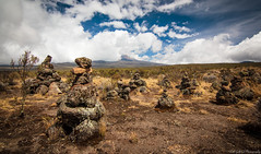 Lucky Charm (Rod Gotfried Photography) Tags: africa travel mountain kilimanjaro canon tanzania glacier climbing 550d t2i 1116mm