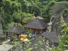 P9270101 (tonkonogov) Tags: indonesia bali ubud
