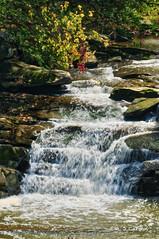 Falls Of The River (mjcarsonphoto) Tags: berea clevelandmetroparks rockyriverreservation bereafalls