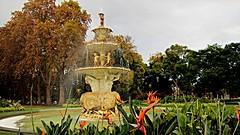 Carlton Gardens - Melbourne (Mary Faith.) Tags: carlton gardens melbourne australia fountain water pool autumn