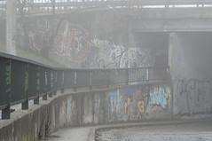Debrecen (NEVESSMOST) Tags: debrecen hungary street city urban style nikonowner nikon nikond5000 nikonphotography nikonphoto d5000 fog graffiti tags walls these dont lie