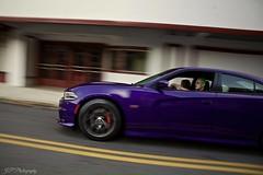 Suicide Squad photo shoot 2016 (G's16PCPScat) Tags: greenhair downtown uptown hotrod carshow mopar srt rt hemi photography photoshoot purple plumcrazy 2016chargerscatpack joker harleyquinn suicidesquad