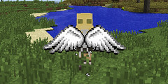 Cosmetic Wings Mod for 1.10.2/1.7.10 (KimNanNan) Tags: minecraft 3d game online video games
