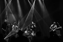 flamingo tours (paseando...) Tags: rock rockroll bn msica escenario focos luz batera guitarra saxo contrabajo