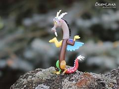 MLP Discord (capricornmeadow) Tags: mlp little pony discord dragon chimera mylittlepony