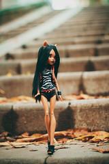 clawdeen (olgabrezhneva) Tags: handmade craft outfit dolsoutfit doll hobby monsterhigh monsterhighdolls     faceup  reroot people indoor ooak groupshot clawdeen wolf clawdeenwolf