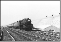 Black Five on train to North Wales (john48677) Tags: black five 44682 warrington sixties steam