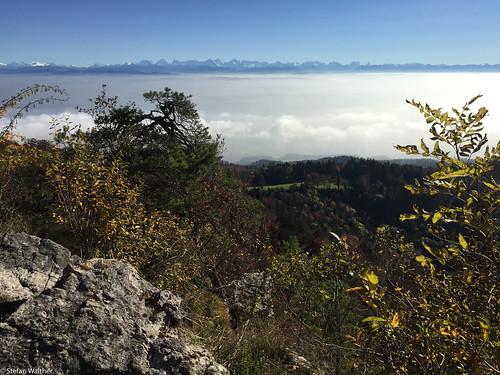 alps over the fog