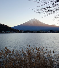 Mt Fuji and the Kawaguchiko lake at sunset (phuong.sg@gmail.com) Tags: asia autumn blue calm capped clear cool dawn dramatic early east far forest fuji fujiyama japan kawaguchiko lake landmark landscape light morning mount mountain oriental peaceful peak reality reddish reflection reflex scenery sightseeing sky snow spiritual summit sunrise symmetric tranquil travel volcano winter