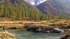 Val di Fumo (Adamello Presanella Alps) (ab.130722jvkz) Tags: italy trentino alps easternalps rhaetianalps adamellopresanellaalps mountains rivers