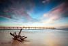 Fingal Jetty Sunset (Beth Wode Photography) Tags: sunset dusk beach beachscape sand timber tree treestump jetty pier fingal fingaljetty sandpumingjetty clouds sunsetclouds beth wode bethwode