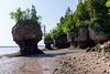 Et les voici à marée basse, les rochers pots de fleurs (Plus Beau Plus Loin) Tags: nb canada hopewell rocks marée mer plage sable