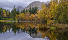 Autumn, Glencoe Lochan (Sarah-86) Tags: glencoe lochan highlands scotland water reflection autumn season landscape nikond810 nikon247028vr