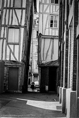 Closing in (gwpics) Tags: france building street people mono rouen architecture monochrome french streetphotography 1994 dog black animals normandy blackandwhite bw white animal blackwhite person socialcomment socialdocumentary society strasenfotograpfie canine lifestyle streetpics
