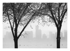 (Gene Daly) Tags: newyorkcity genedaly blackwhite olympusem5 yashinon yashicaautoyashinon55cmf18 pb300037