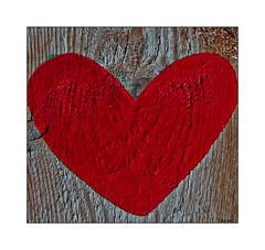 Norwegian Wood By The Beatles (paulinecurrey) Tags: wood heart knots macro splinters beatlesbeetles red white grain whitewashpaint paint art creative norwegianwood closeup staple rust music lyrics song sharp illustration fun macromondays brighton inexplore
