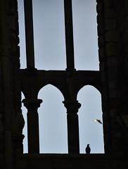 Abbey west window (L. Charnes) Tags: edinburgh holyrood abbey ruins gothic window