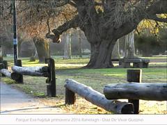 Parque Eva hadjuk primavera 2016 ranelagh   - Diaz de vivar gustavo (Diaz De Vivar Gustavo) Tags: parque eva hadjuk primavera 2016 ranelagh diaz de vivar gustavo estacion amigos la ciudad buenos aires argentina