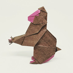 Japanese Macaque, designed by Fumiaki Kawahata (M@ttyGroves) Tags: origami japanese macaque fumiaki kawahata monkey paper