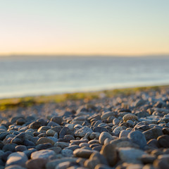 pebbles (Santhosh Rajangam) Tags: beach water pebble