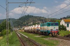 1017 - 655_410 + CISTERNE A MONTELUPO 20-6-2013 (treno TORVISCOSA - ROSIGNANO) FULL HD (SPECIALE CAIMANI XMPR) (Frank Andiver TRAIN IN TUSCANY) Tags: italy train canon frank photo italia photos rail trains tuscany rails locomotive toscana treno fs trenitalia treni 655 ferrovie binario caimano fullhd e655 andiver frankandiver trainintuscany