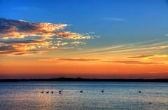 Fenicotteri (socrates197577) Tags: sardegna nikon tramonto mare uccelli sole paesaggi hdr paesaggio photomatix mygearandme infinitexposure