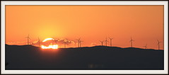 hot sunrise (Marlis1) Tags: sun sunrise energy sonnenaufgang tortosa windpower windturbines onexplore explored marlis1 parceolic canoneos60d explorejuly282013