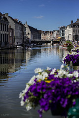 Gent (Carlotta B) Tags: flowers sky water river 50mm belgium gent d600