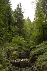 (evantide3000) Tags: austria dornbirn