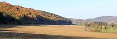 Werra Valley (:Linda:) Tags: tree germany village thuringia soil hessberg hselrieth werravalley