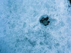 The captive (JaZ99wro) Tags: blue film ice analog iceland islandia pebbles jokulsarlon jkulsrln c41 portra160 mamiya645protl f0241 negfix8 tetenal2bathkit exif4film