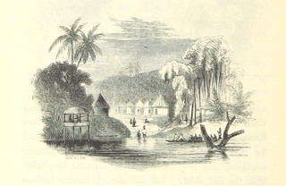 Image taken from page 306 of 'A Narrative of the Expedition sent by Her Majestys Government to the River Niger in 1841, under the command of Capt. H. D. Trotter. [With plates.]'