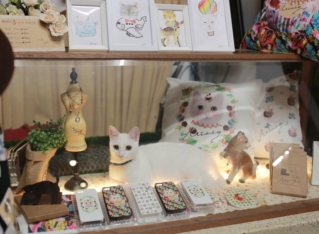 MIMIG.TW 與貓咪共同的貓咪品牌