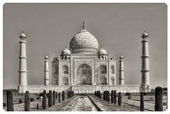 Agra IND - Taj Mahal 08