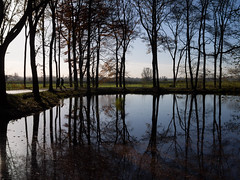 Reflections (TeVerGezocht) Tags: autumn trees reflection water pond silhouettes