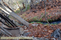 112413-086 (leafworks) Tags: arizona usa roadtrips adventures ancestors chronicles americansouthwest montezumawell holywells sacredsprings sirthomasleaf ancestralwalks oregontocaliforniatonewmexi oregontocaliforniatonewmexicotoireland
