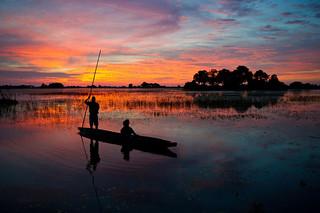 Botswana Okavango Delta Photo Safari 54