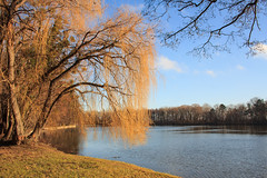 [Explore] Laxenburg (Christine Schmitt) Tags: landscape landschaft laxenburg see lake explore explored sun sonne day tag roj clear cheesy42