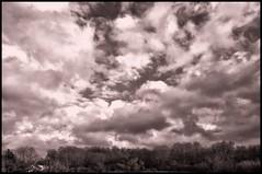 The Kitchen Sink (brev99) Tags: blackandwhite monochrome clouds tone niksoftware silverefex sigma1770os