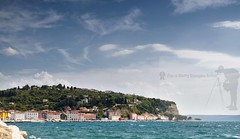 Slovenian adriatic coast (Sebastian Condrea) Tags: old city travel blue roof sea summer panorama house building tree green tourism church water wall pine architecture facade port marina square landscape coast harbor boat town seaside europe mediterranean village view cathedral harbour tourist panoramic medieval historic slovenia coastal destination coastline mansion sight piran adriatic mediterraneansea touristic adriaticsea panoramicview pirano