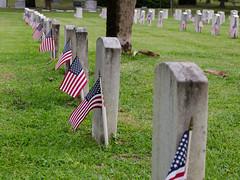 Thank You All 006 (VinceFL) Tags: greenwoodcemetery flag armedforces manfrottotripod nikonmll3 afsdxnikkor18105mmf3556gedvr vinceflnikond7000orlando memorialday2014