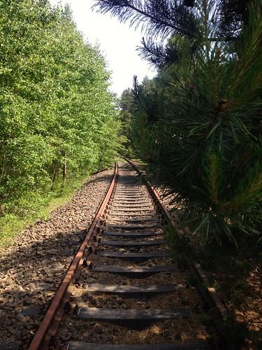 some old, unused train tracks