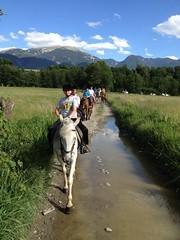 Campamentos de Verano Pyrene_Camp Equitación (Club Pyrene) Tags: caballos summercamp aventura lacerdanya pirineu pyrene campamentos sostenible coloniesestiu