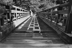 Gyeongsang lovers on a bridge (cummings.andrewj) Tags: bridge light shadow love film analog asia shadows korea lovers analogue lover southkorea filmphotography fujika