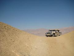 In the Negev desert