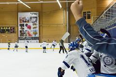 IMG_3734 (Armborg) Tags: leksandsif hv71 sdhl mål lag